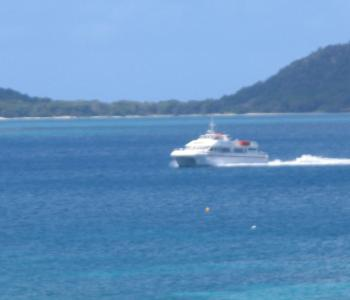 carriacou feb 09 089